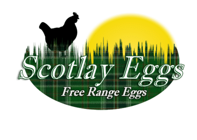 Scotlay Logo Design